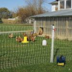 Review Electric Poultry Netting