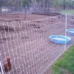 Using Electric Poultry Netting the Best